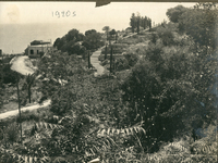 The American University of Beirut Campus, ca. 1920
